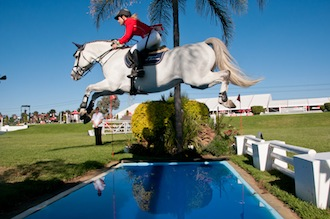Tips to choose a showjumper