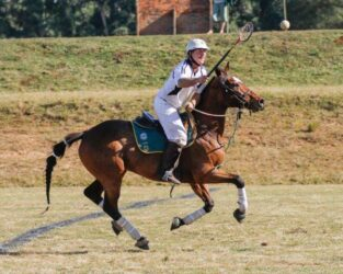 Protea Polocrosse team to represent SA at 2015 World Cup