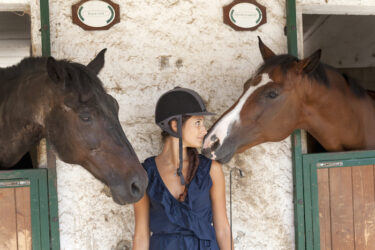 The rising cost of horse care