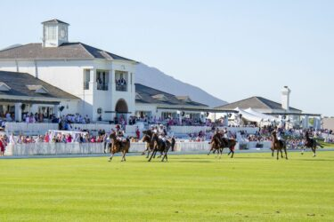 Cintron Pink Polo in support of breast cancer