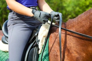 Understanding the outside rein