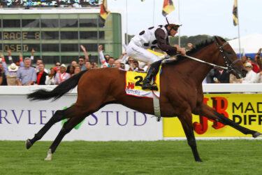 Futura is SA's best racehorse