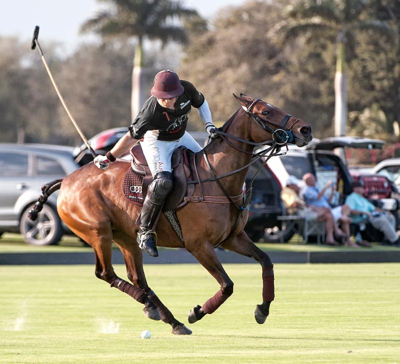 USPA International Cup