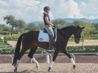 Is your horse straight or skew?