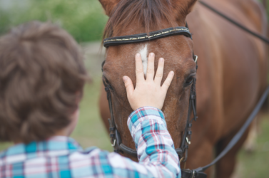 10 signs he's not the right horse for you
