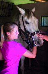 Rose Lane Equine Training Centre