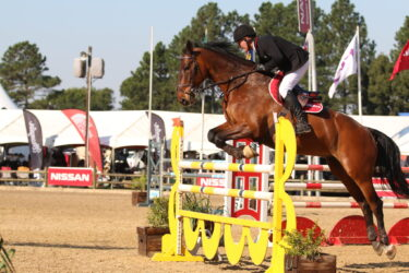 Barry Taylor and his new horse Dicardo