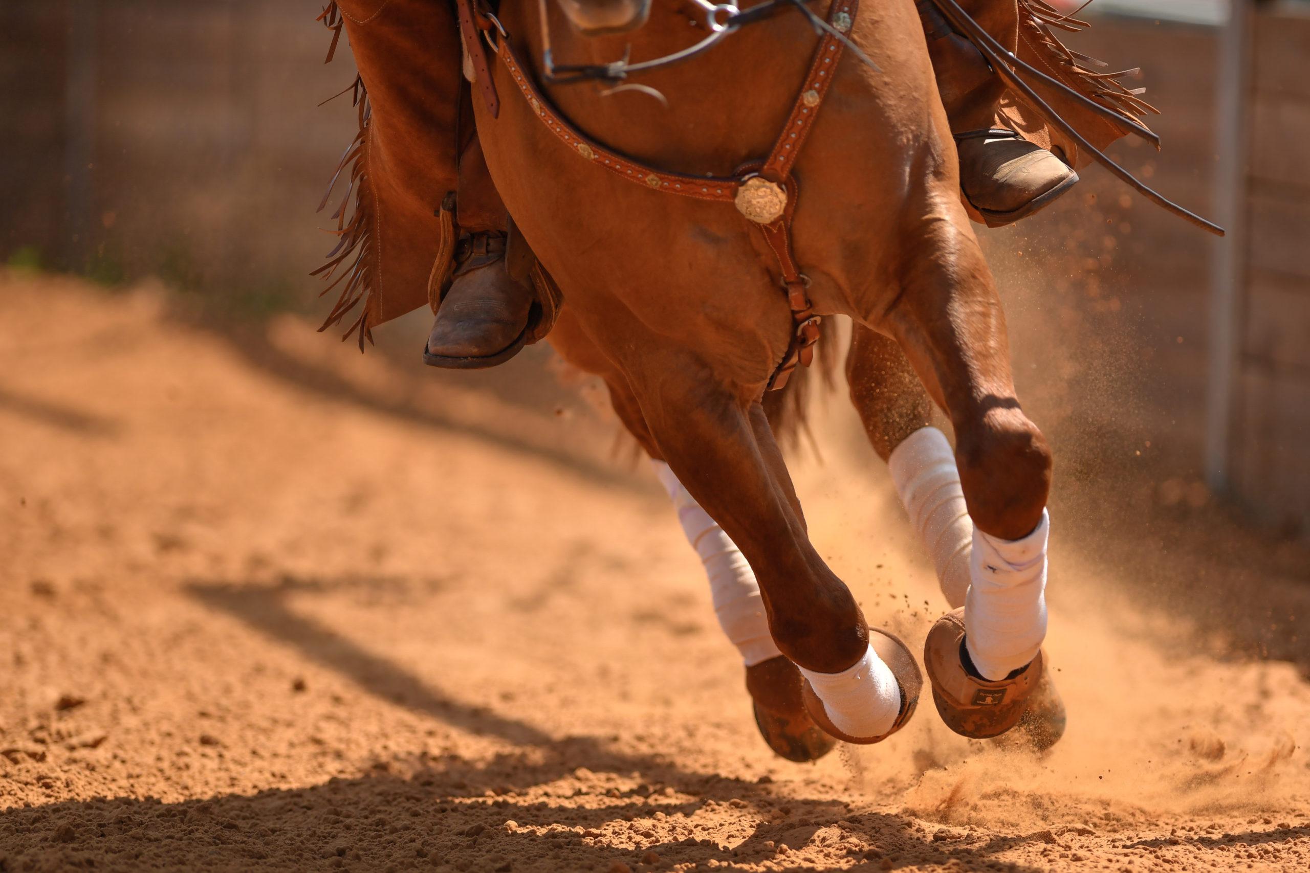AskHQ: Cowboy dressage®