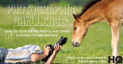 HQ Photographic Challenge