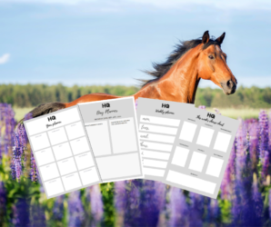FREE GIFT: January 2021 Planner